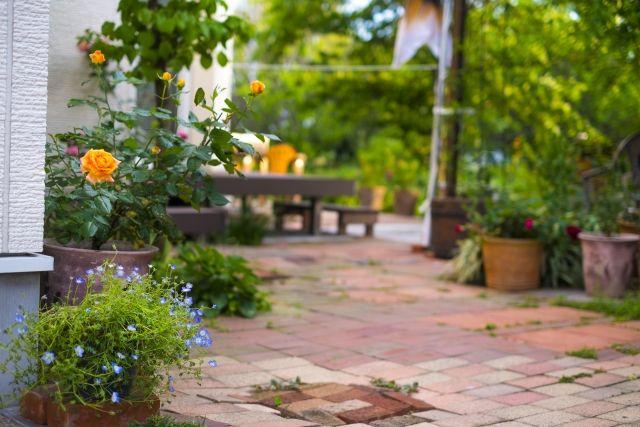 外壁塗装で植木や花壇は枯れたりしないの!?対策方法はある?