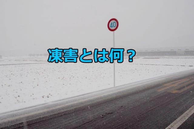 凍害とは何!?