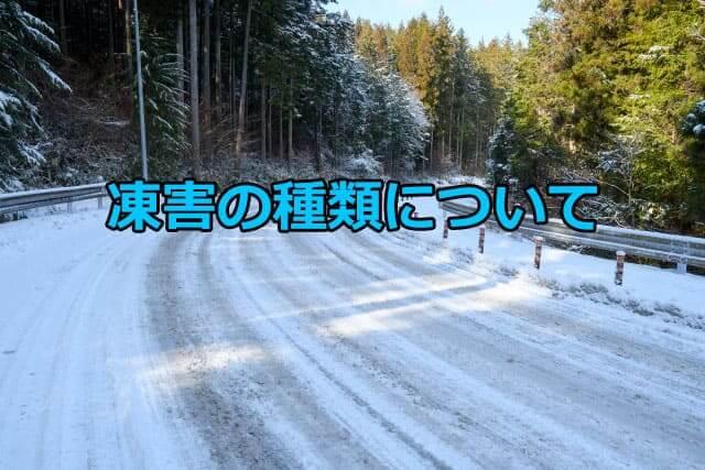 凍害の種類について