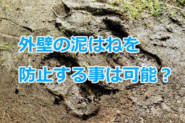 外壁の泥はねの防止方法とは?意外と簡単に対策が可能