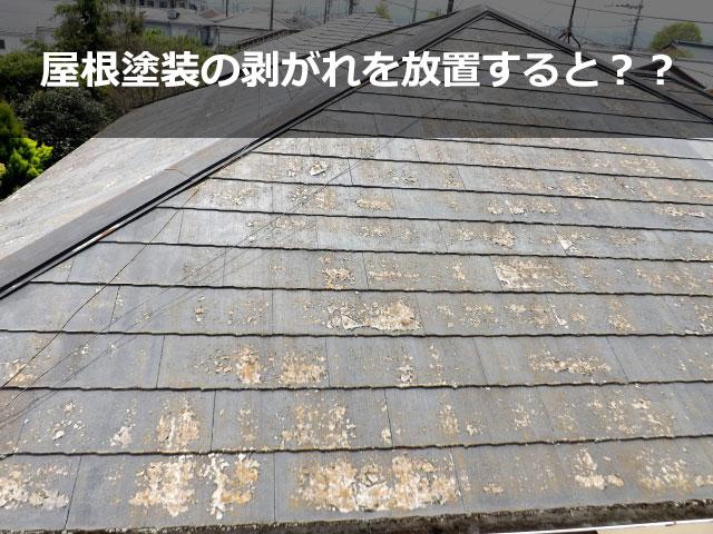 屋根塗装の剥がれを放置するとどうなる?