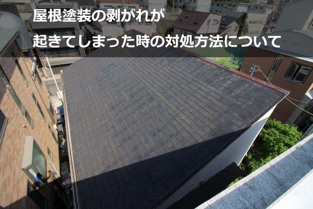 屋根塗装の剥がれが起きてしまった時の対処方法